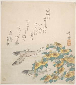 Fishes Swimming with Yellow Flowers by Keisai Eisen, kachoga