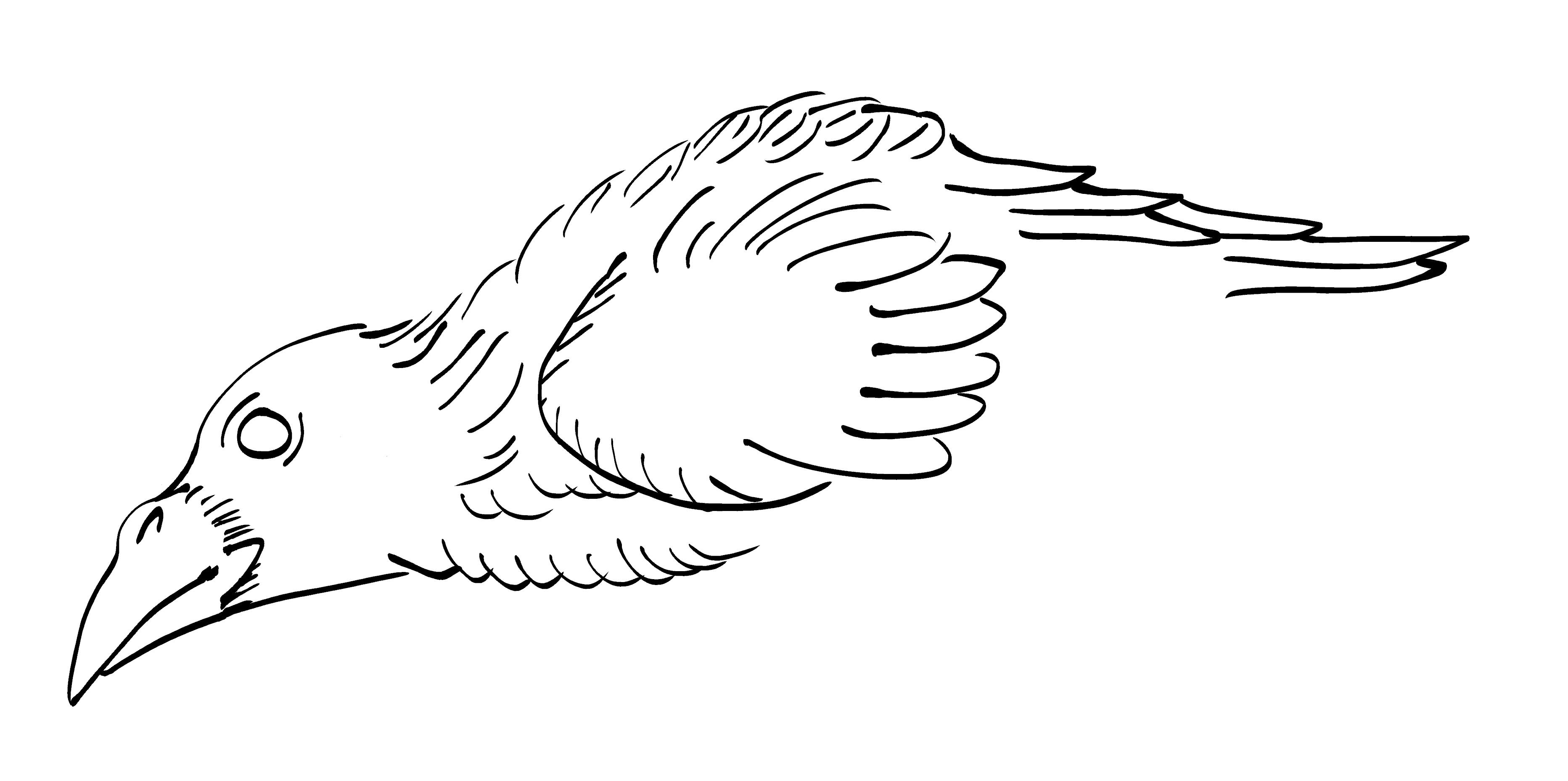 Crow Raven -ukiyo-e BlackandWhite4-(からす) by RedSparkle (11-2019)